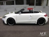 audi-tts-roadster-wedding-car-white-green-motif-13